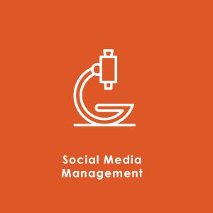 10-Social-media-management
